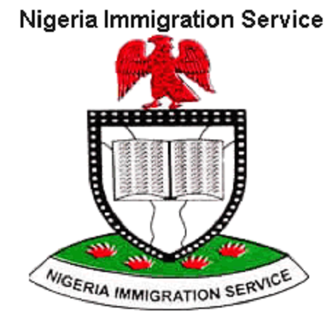 31,000 Indian migrants reside in Nigeria – Immigration boss