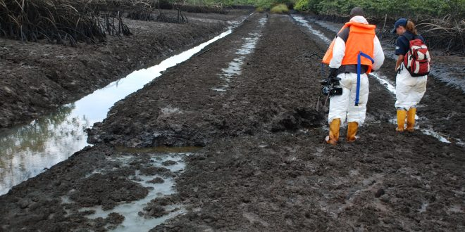 At last, FG raises N64.8bn for Ogoni Clean-up
