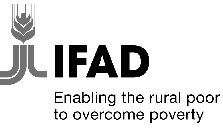 IFAD says Diaspora remittances to exceed $6.5trn by 2030