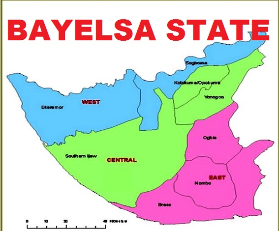 Security firm faults Bayelsa assembly over crime allegations