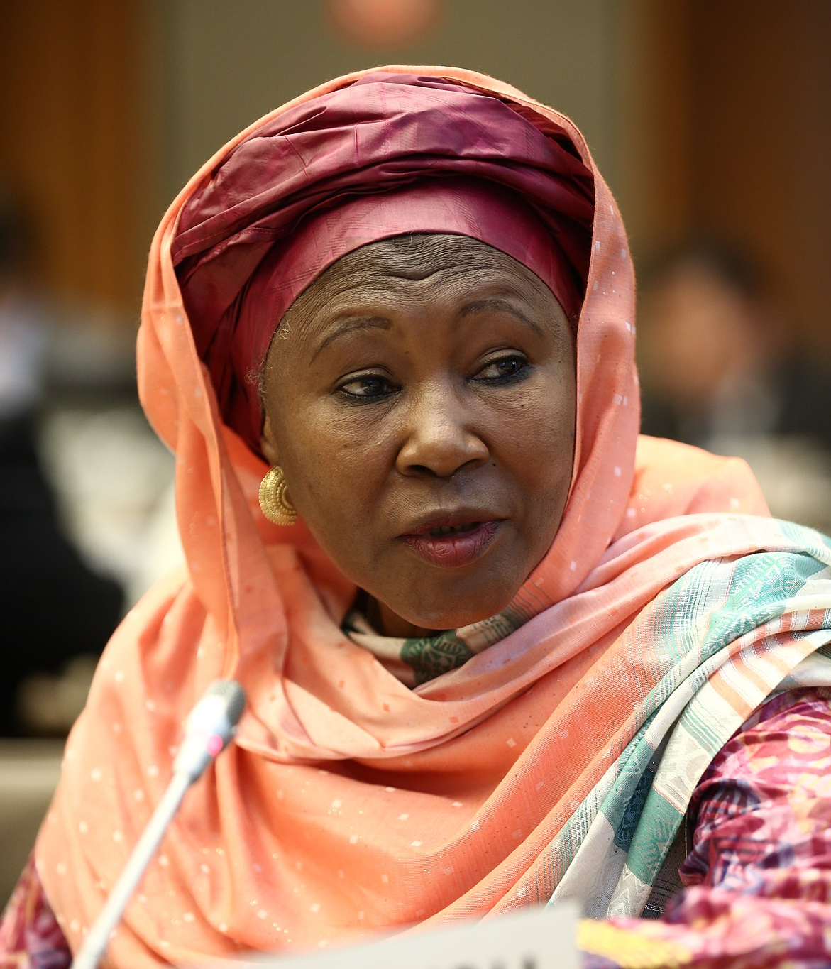 My country will collapse if Nigeria withdraws its support – Gambian VP
