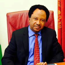 Buhari is glue holding APC together – Shehu Sani