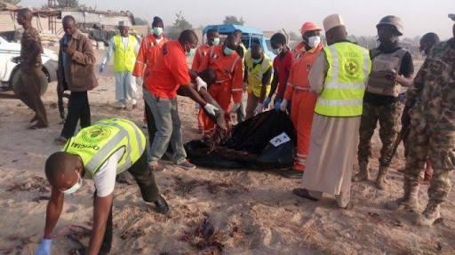 20 killed in Borno suicide attack