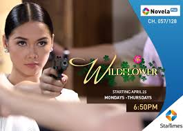 New Telenovela Series, Wildflower debuts on StarTimes