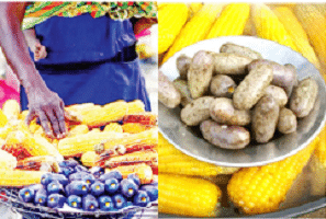 Corn delicacy: How dealers make brisk business, smile to bank