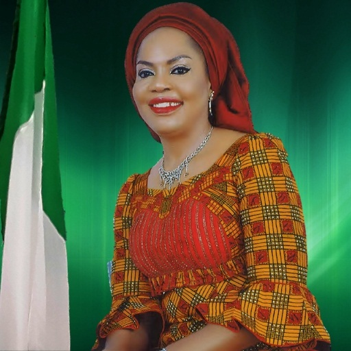 Nigeria needs female speaker in 9th N/Assembly