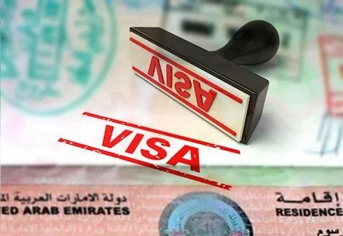 NIS mulls introduction of various visa categories