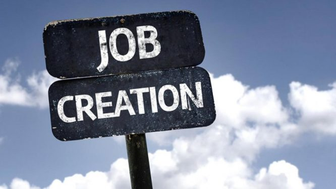 jobcreation- daily times