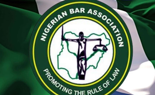 Ghost voters were smuggled into the NBA voting register – Egbe Amofin