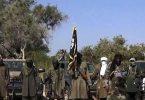 Federal Boko Haram Buhari