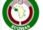 ECOWAS bans Mali over coup, pledges sanction