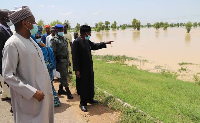 Flood: FG makes interventions for 450,000 hectares of rice farmlands