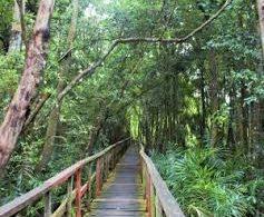 Environmental Expert Tasks Govt. on Rural Tourism Development