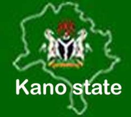 Kano rerun: No serving commissioner arrested – KNSG