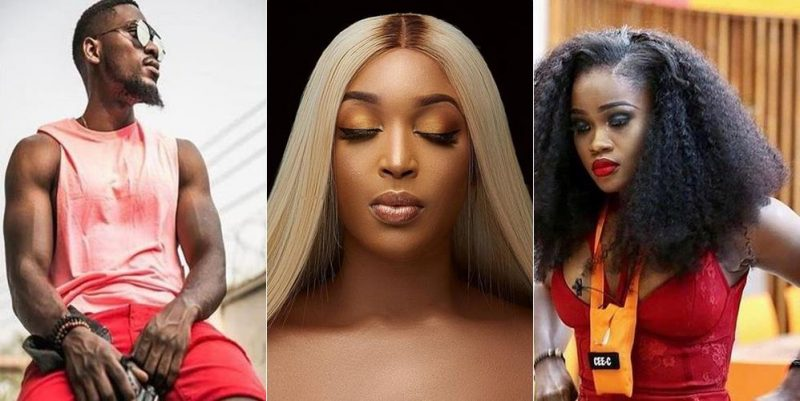 #BBNiaja: Dabota Lawson defends Cee-C actions, says Tobi seems to be turned on by Cee C's toxic behavior