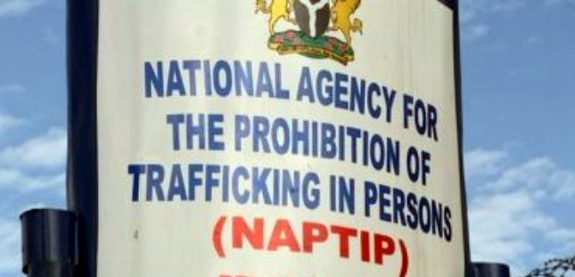 British Government to support NAPTIP in the fight against human trafficking