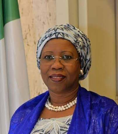 FG inaugurates steering committee on business development